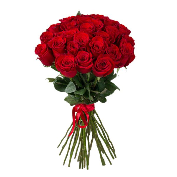 24 Red Roses Bouquet Resim 1