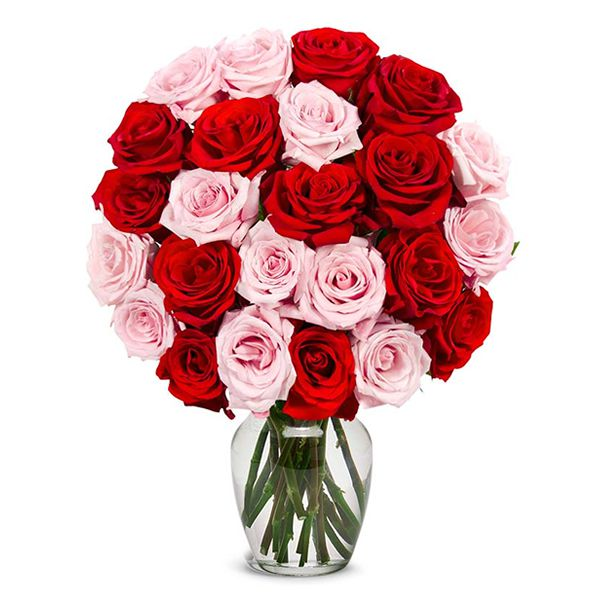 24 Pink and Red Roses in Vase Resim 1